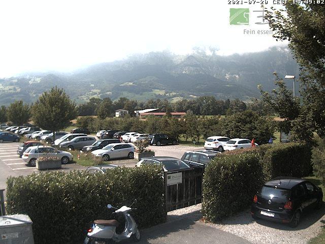 Webcams Rheintal